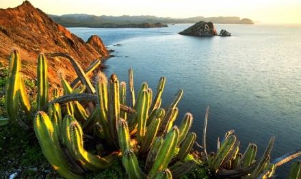 Екскурзия до Мексико с почивка на Плая дел Кармен